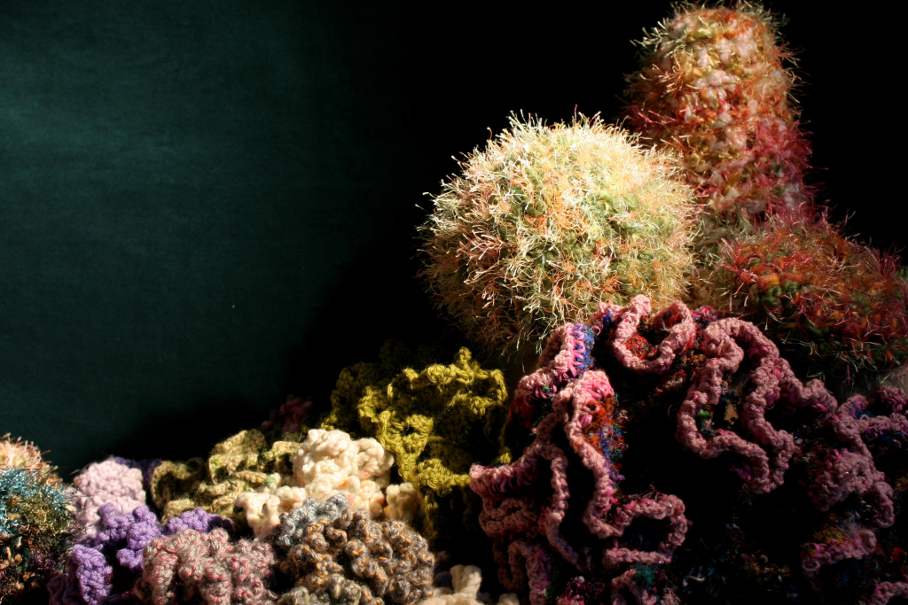 coral-reef-photo