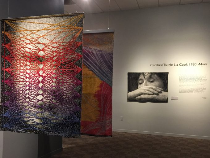 Lia Cook - Cerebral Touch - San Jose Museum of Quilts & Textiles
