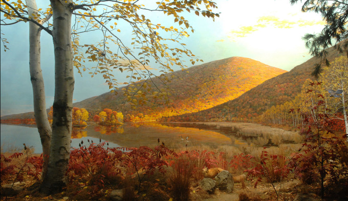 The diorama, An October Afternoon Near Stissing Mountain at the American Museum of Natural History