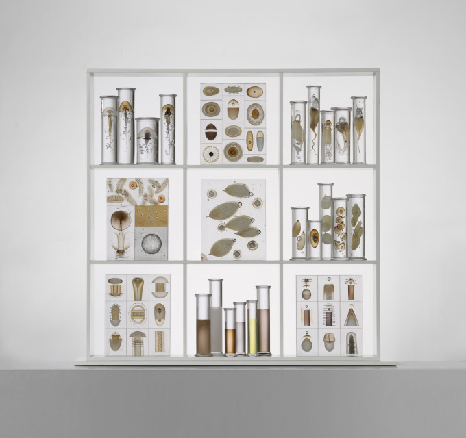 Cabinet-of-curiosities-2011-100-x-100-x-20-cm-300