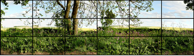 """""""MAY 12TH 2011 RUDSTON TO KILHAM ROAD 5PM"""" 18 DIGITAL VIDEOS SYNCHRONIZED AND PRESENTED ON 18 55"""" NEC SCREENS TO COMPRISE A SINGLE ART WORK, 27 X 47 1/8"""" EACH 81 X 287"""" OVERALL DURATION: 2:00 © DAVID HOCKNEY"""
