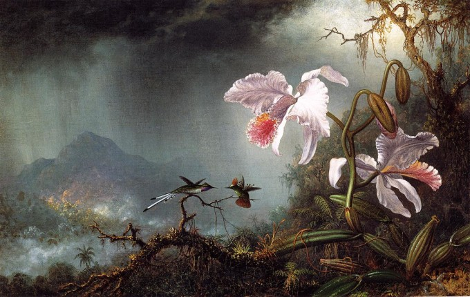 Two_Fighting_Himmingbirds_with_Two_Orchids_1875