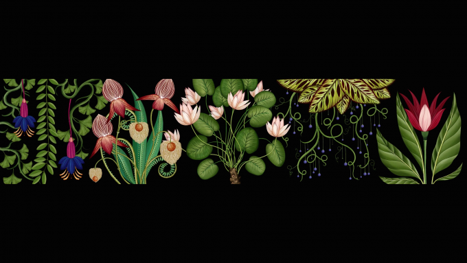 Stills from Publicis Botanical, an animated botanical wallpaper