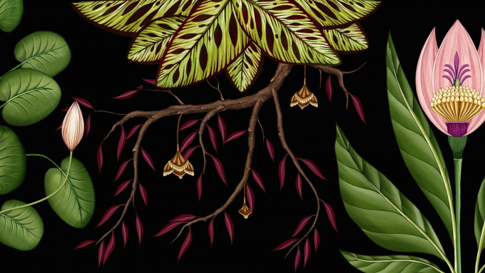 A detailed still from Publicis Botanical, an animated botanical wallpaper