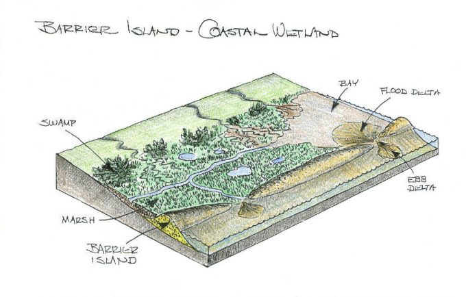 Geological Illustrations of costal wetland and barrier islands