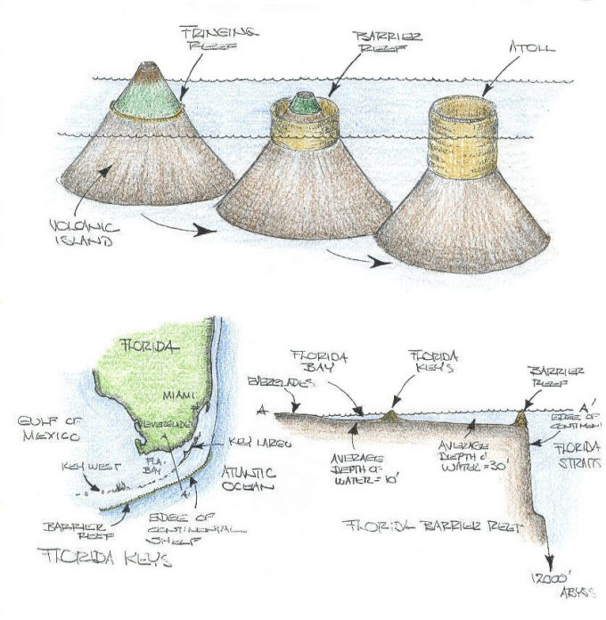 Geological illustrations of atolls and volcanic islands.
