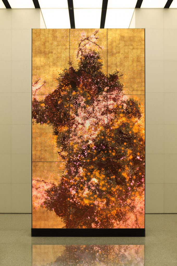 A sample showing the season changes in the image in timelab's Time-blossoming Flowers