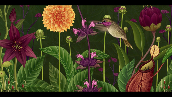 Still frame from Azuma Makoto Story of Flowers showing a humming bird collecting nectar from a flower